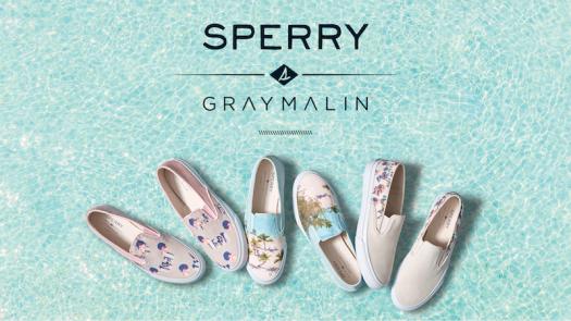 Gray-x-Sperry